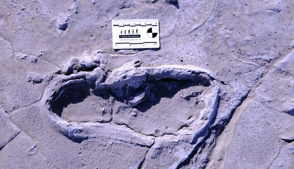 Prehistoric human footprints reveal a rare snapshot of ancient human group behavior