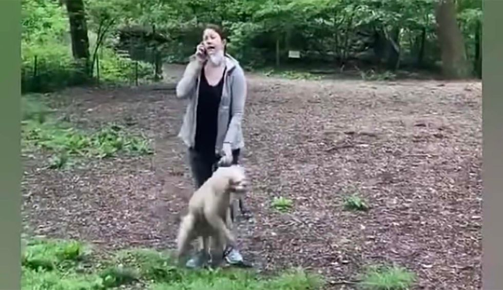 White woman loses her dog and maybe her job after calling cops on black man