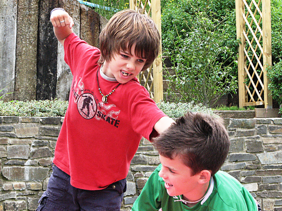 Here's Why Siblings Fight  -  But Colleagues Cooperate