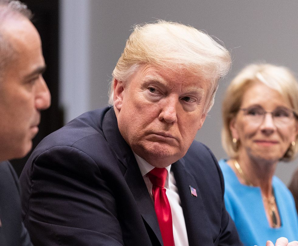 'They're going to absolutely crush him': Trump is reportedly panicking and 'losing it' as Democrats finally gain the upper hand