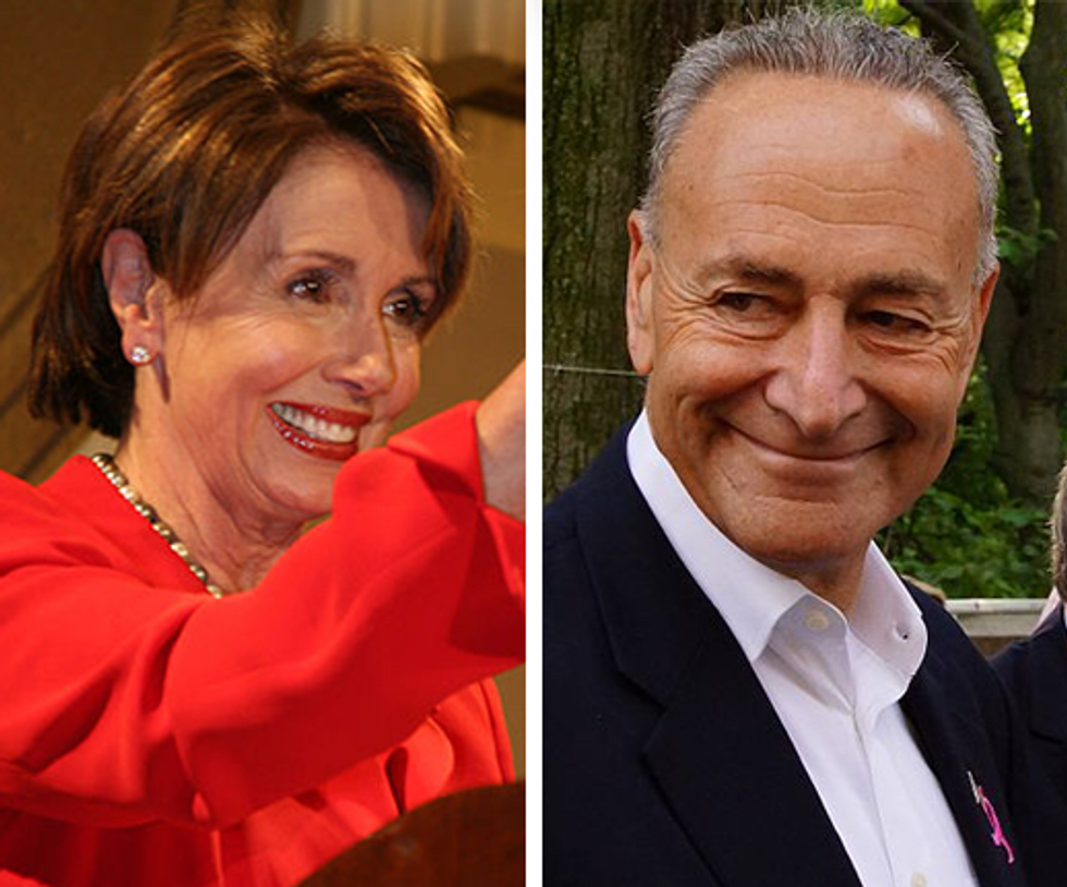 The Democratic Party's revolt against Nancy Pelosi is in full swing  -  here's why that wrath is misguided and misplaced