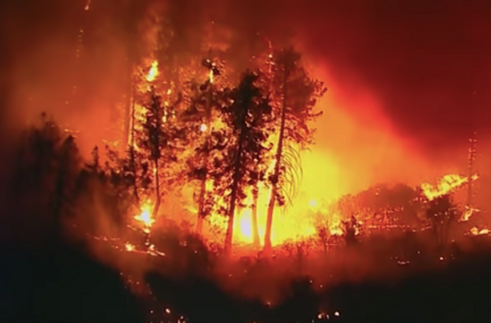Here's How Climate Change Impacts the Risk of Wildfires