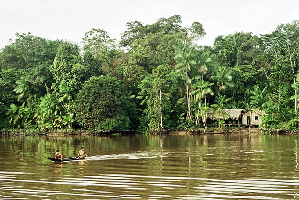 The New Brazilian President Could Wreak Destruction on the Amazon Rainforest