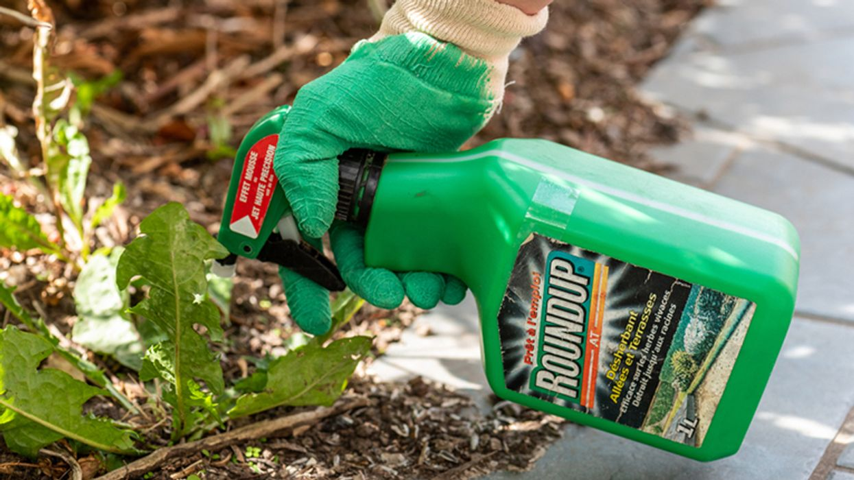 'Convinced': Scientists warn of the cancer risk from a popular weedkiller