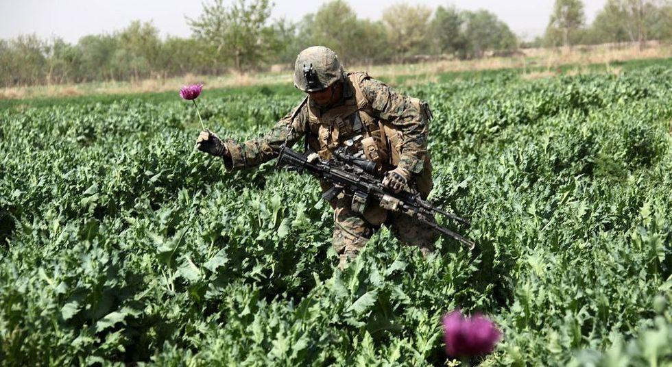 America's Afghanistan anti-drug boondoggle nears the $9 Billion mark