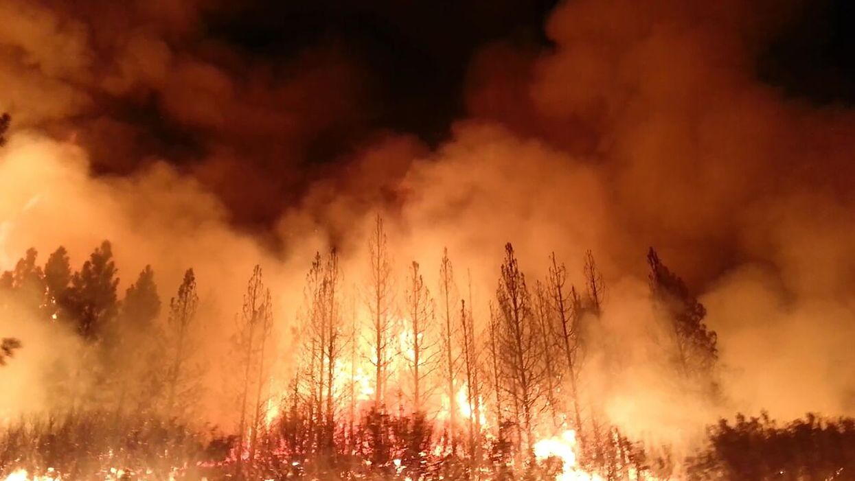 This is climate change: Burnt parts of Pacific forests are landing on the Atlantic