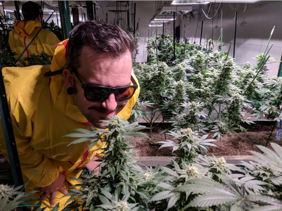 Here are 5 key facts about how legal weed is transforming Colorado