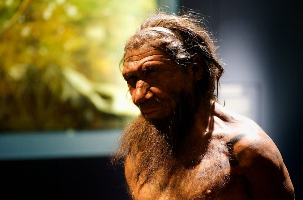 Neanderthals: Javelin athletes helped us show how effective they were at hunting with weapons