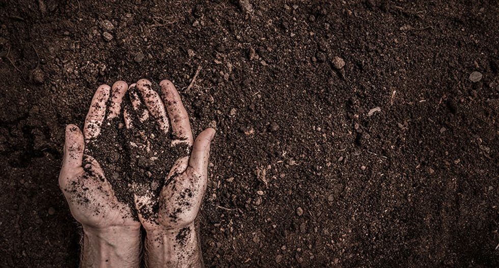 How to turn dirt into soil