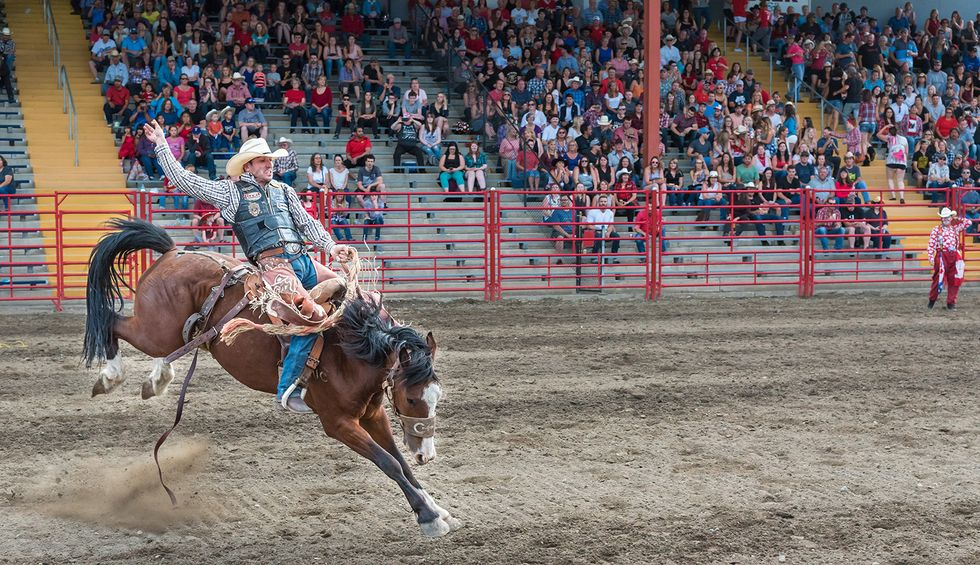 Texas officials knew coronavirus could spread at the Houston rodeo. They proceeded with the event anyway