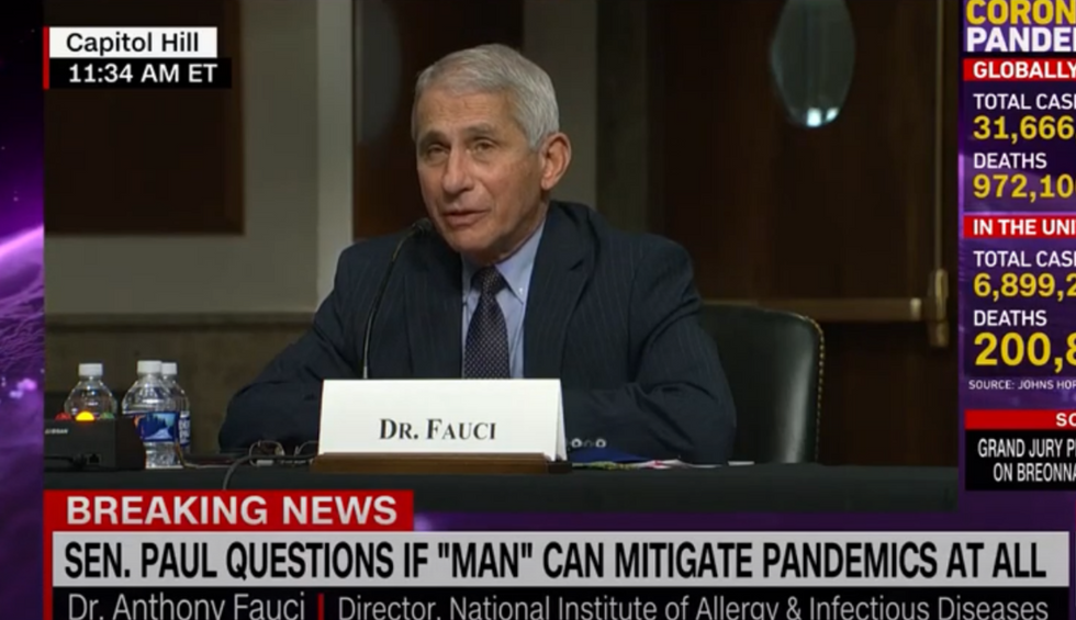 'You're not listening': Dr. Fauci schools Rand Paul live during heated Senate COVID-19 hearing