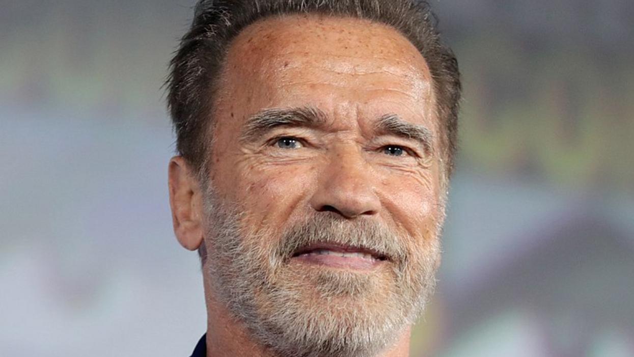 'Judgment day': Schwarzenegger blasts Trump's 'un-American' call to Raffensperger in blistering op-ed