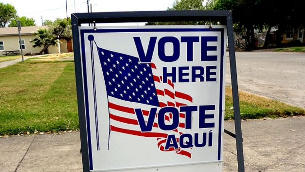 GOP official seeks to 'build an army' of poll watchers as Texas lawmakers target voting rights
