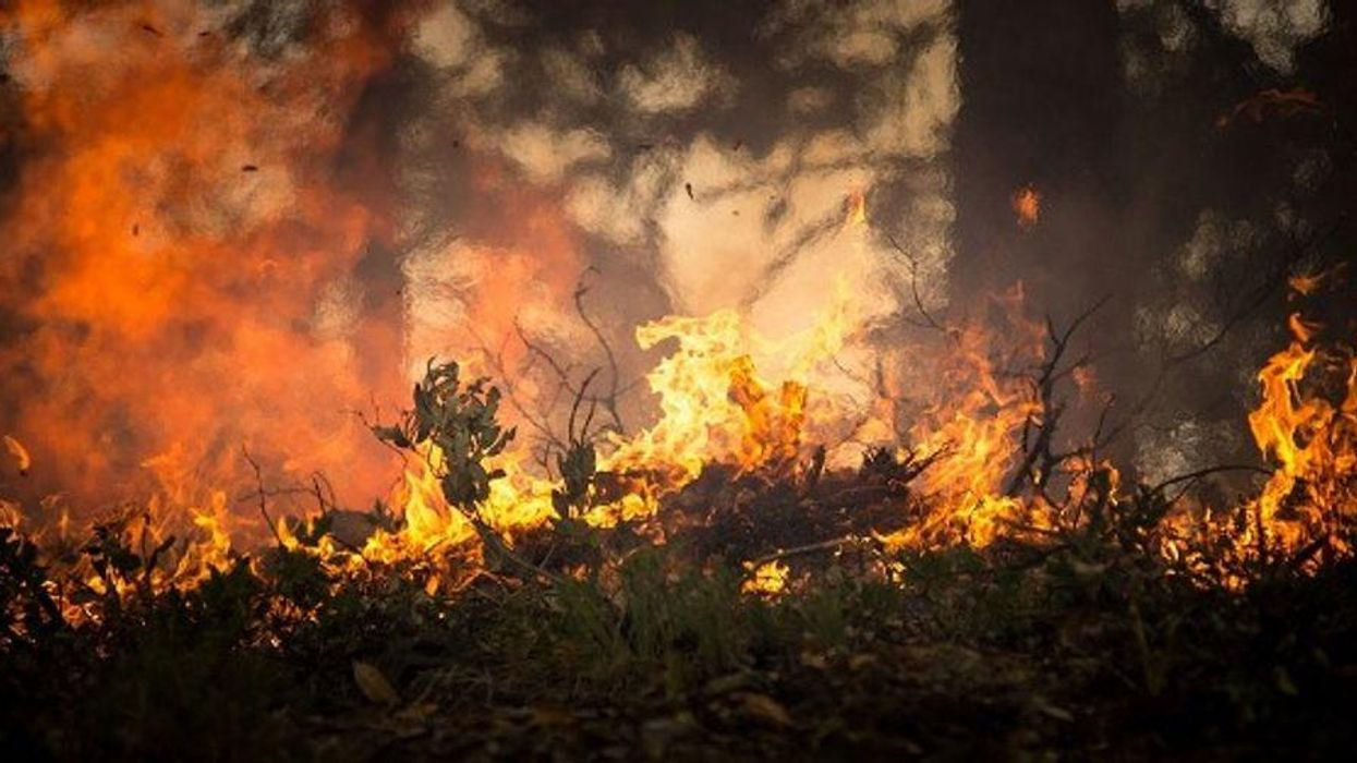 New UN climate report is a 'wake-up' call for a world on fire