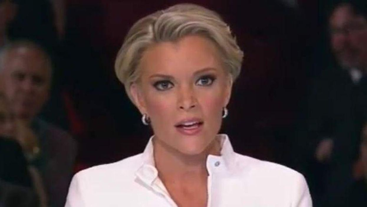 Ted Lieu slams Megyn Kelly after she told him to 'grow up' amid his concerns about the Capitol riots