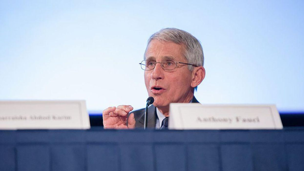 'You do not know what you are talking about': Fauci destroys 'lying' Rand Paul over COVID conspiracy theory