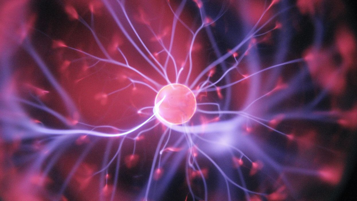 New research challenges our basic theories about how the brain works