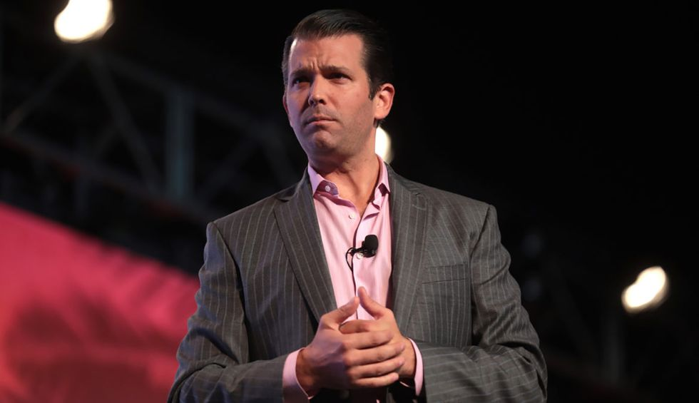 Donald Trump Jr. is writing a book — and Twitter has some hilarious title suggestions