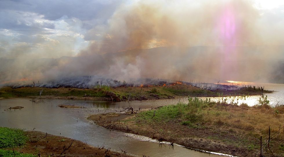 In Brazil's rainforests, the worst fires are likely still to come