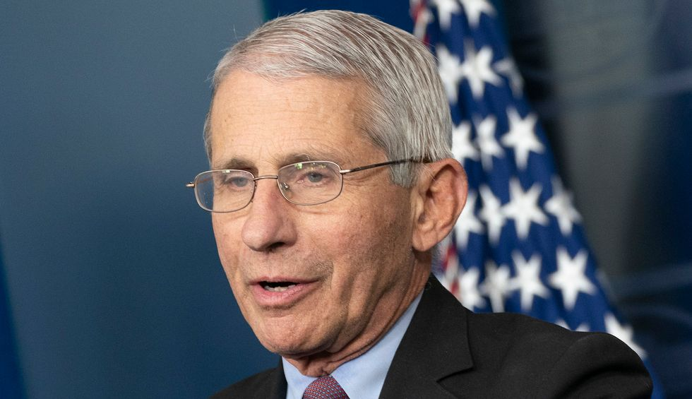 Watch: Dr. Fauci undermines Trump's hydroxychloroquine claims — says it's 'quite evident' the drug won't treat COVID-19