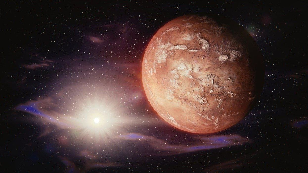 What would a martian look like?