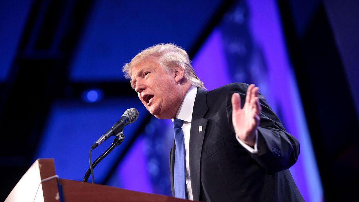 How Trump's 'destructive' and 'erratic behavior' could help Democrats keep their Senate majority in 2022