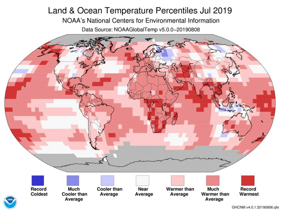 Climate scientists sound the alarm as global temperatures hit 140-year record high